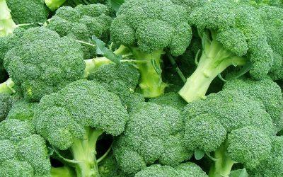Broccoli voorkomt artrose